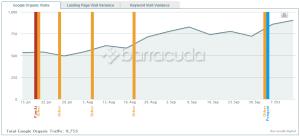 Ruch w witrynie rośnie wraz z kolejnymi aktualizacjami Google